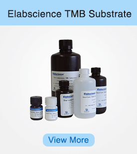TMB Substrate
