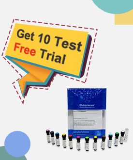 Get 10T Free Trial