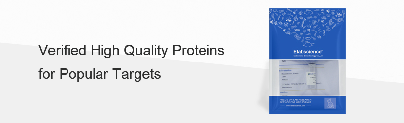 Elabscience Recombinant Proteins