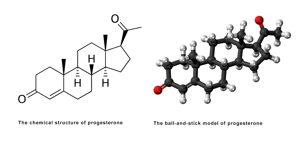 Review on Progesterone