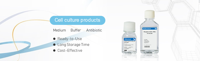 Ready-to-Use and Cost-Effective Cell Culture Products