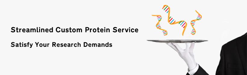 protein service