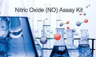 popular biochemical kit
