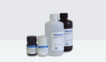 other reagents