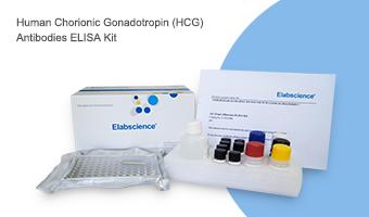 outer packing of Elabscience ELISA kit