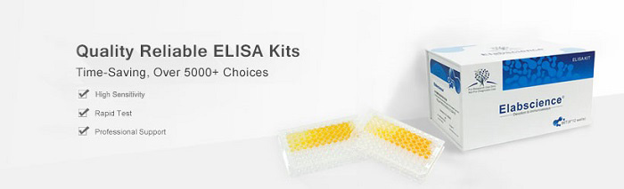 popular products related to ELISA