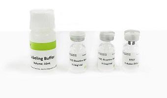 Elabscience CY3 labeling kit