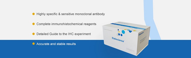 Elabscience ihc kit