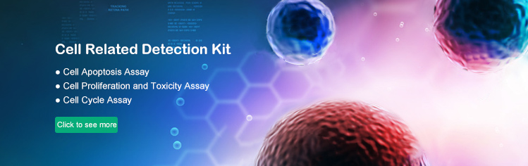 Cell Related Detection Kit